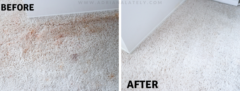 Hoover Spotless Go Carpet Cleaner Review, Makeup Stain Removal