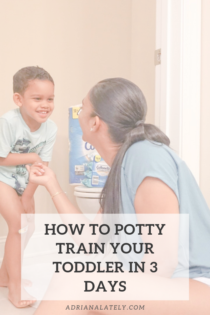 How To Potty Train Your Toddler Pinq